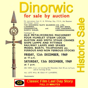 Dinorwic Sales Cat Movie
